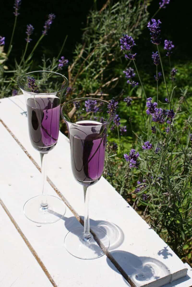 purple lavender champagne cocktail recipe mix