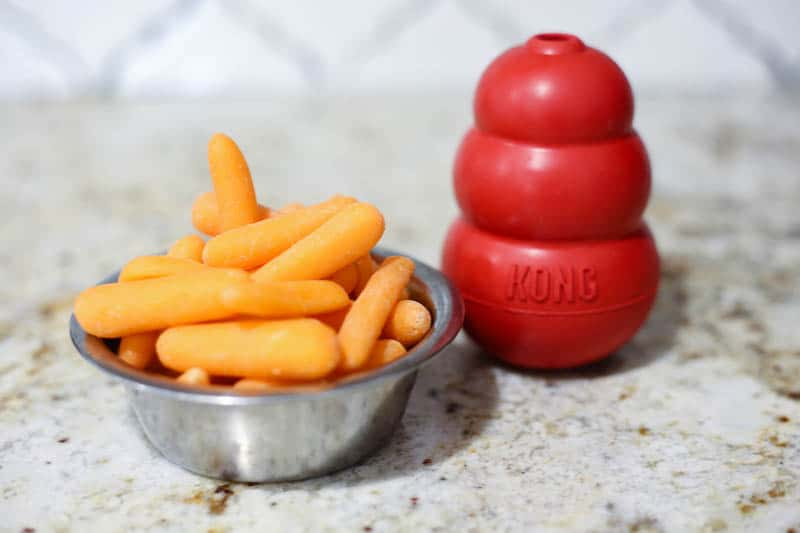 carrots in dog bowl on counter